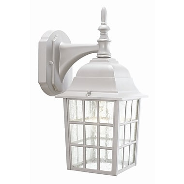 Design House Earl Grey 1-Light Outdoor Wall Lantern