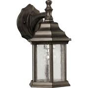 Forte Lighting 1-Light Outdoor Wall Lantern; Desert Stone