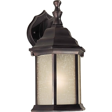 Forte Lighting 1-Light Outdoor Wall Lantern; Olde Bronze