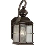 Forte Lighting 1-Light Outdoor Wall Lantern; 13.25'' H x 6'' W x 8'' D