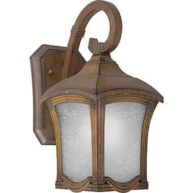 Forte Lighting 1-Light Outdoor Wall Lantern; 19.25'' H x 9'' W x 12'' D