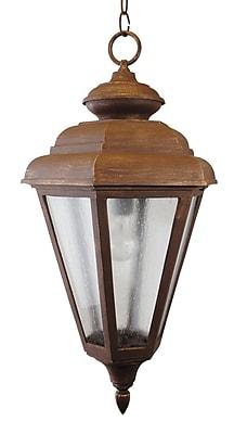 Melissa 1500 Series 1-Light Outdoor Hanging Lantern; Old Bronze
