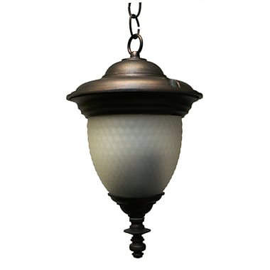 Melissa Tuscany 2-Light Outdoor Pendant; Aged Silver