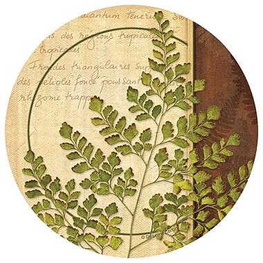 Thirstystone Ferns I Occasions Coaster (Set of 4)