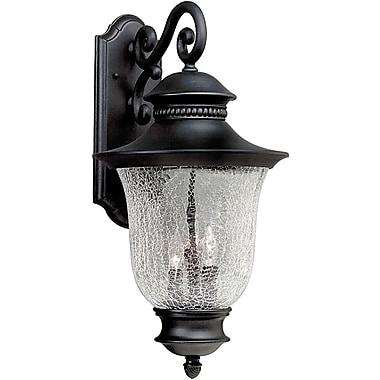 Forte Lighting 3-Light Outdoor Wall Lantern; Black
