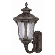 TransGlobe Lighting 1-Light Outdoor Sconce
