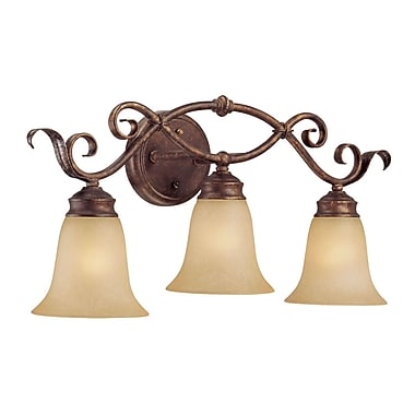 Millennium Lighting 3-Light Vanity Light; Burled Bronze/Silver