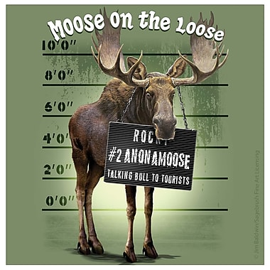 Thirstystone Moose on the Loose Occasions Coasters Set (Set of 4)