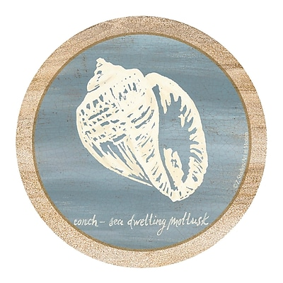 Thirstystone Imperial Conch Coaster (Set of 4)