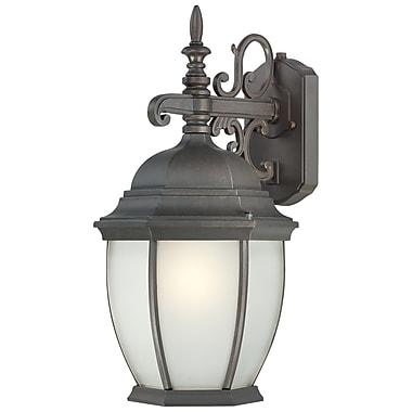 Thomas Lighting Covington 1-Light Outdoor Wall Lantern; Painted Bronze