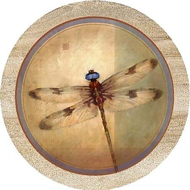 Thirstystone Dragonfly Parchment Coaster (Set of 4)