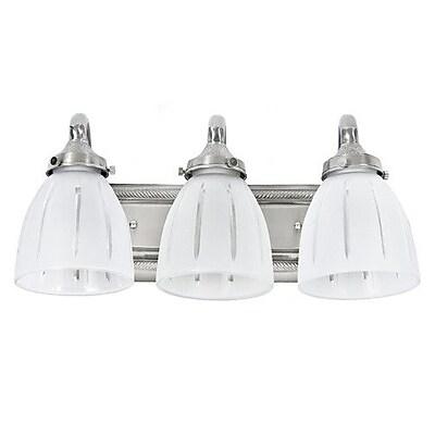 JVI Designs 3-Light Vanity Light; Pewter