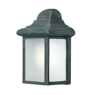 Woodbridge Energy Saving 1-Light Outdoor Flush Mount; Powder Coat Black