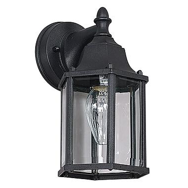 Sunset Lighting 1-Light Outdoor Wall Lantern