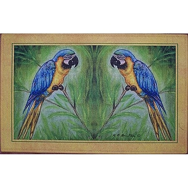 Betsy Drake Interiors Coastal Macaw Doormat; Rectangle 18'' x 26''