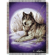 Northwest Co. Entertainment Tapestry Hautman Brothers Moon Called Throw Blanket