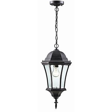 Z-Lite Wakefield 1-Light Outdoor Hanging Lantern