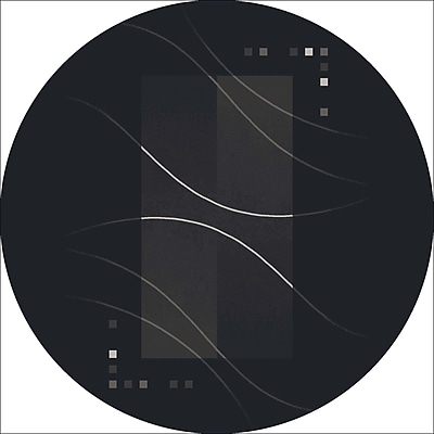 Milliken Pastiche Caliente Ebony Black Area Rug; Round 7'7''