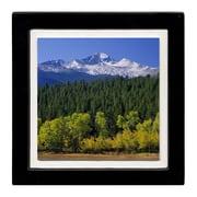 Thirstystone Aspen Landscape Ambiance Coaster Set (Set of 4)