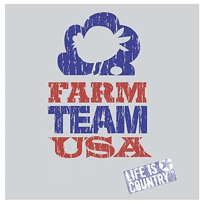 Thirstystone Farm Team USA Occasions Coasters Set (Set of 4)