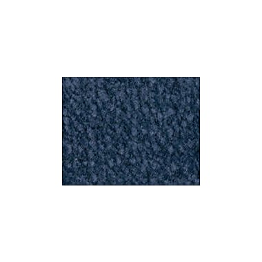 Carpets for Kids Solid Mt. Shasta Ocean Blue Area Rug; 4' x 6'