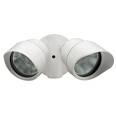 Lithonia Lighting Security 2-Light SpotLight; White