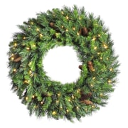 Vickerman Cheyenne Pine Wreath; 24''