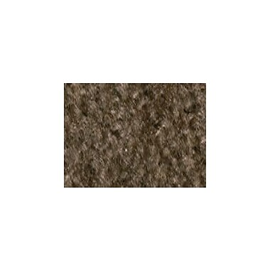 Carpets for Kids Solid Mt. St. Helens Mocha Area Rug; Rectangle 6' x 9'