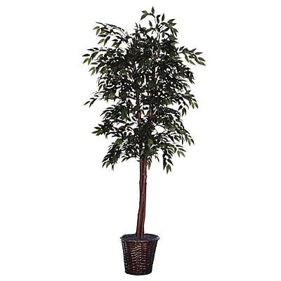 Vickerman Floor Ficus Tree in Basket