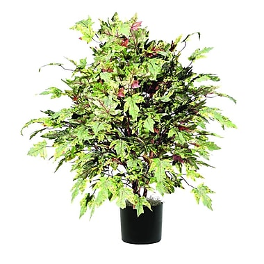 Vickerman Extra Full Frosted Maple Tree in Pot