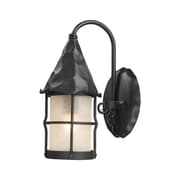 Landmark Lighting Rustica 1-Light Outdoor Wall Lantern; Matte Black
