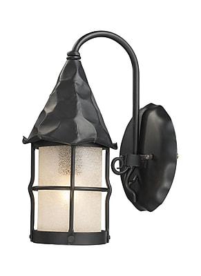 Landmark Lighting Rustica 1-Light Outdoor Wall Lantern; Matte Black