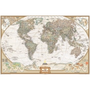 """WALL POPS!® Dry-Erase National Geographic Map, 36"""" x 24"""""""