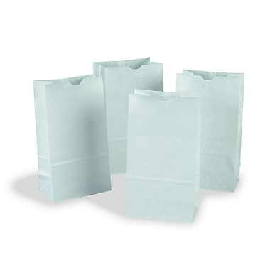 Pacon Corporation Pac72020 Kraft Bags, 6