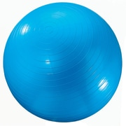 "Dick Martin Sports Exercise Ball, 24""(Dia), Blue"