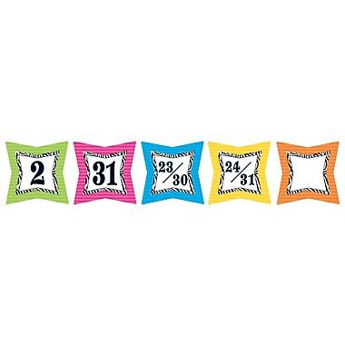 Teacher Created Resources Colorful Days Calendar, Zebra Print