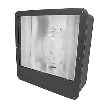 Howard Lighting 1000W Extra Large Flood Light w/ ELFLSF Bracket