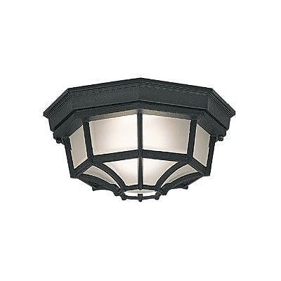 Designers Fountain Budget Cast Aluminum 1-Light Flush Mount; Black