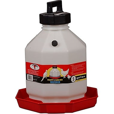 Miller Mfg Plastic Poultry Waterer in Red; 5 Gallon