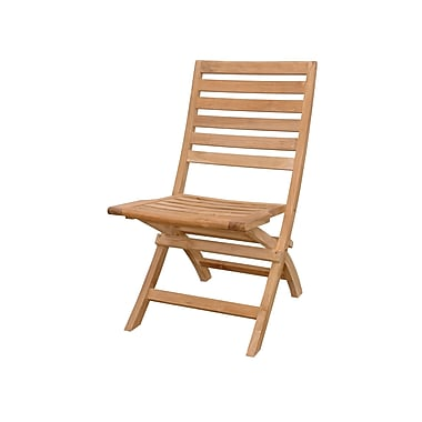 Anderson Teak Andrew Folding Patio Dining Chair (Set of 2)