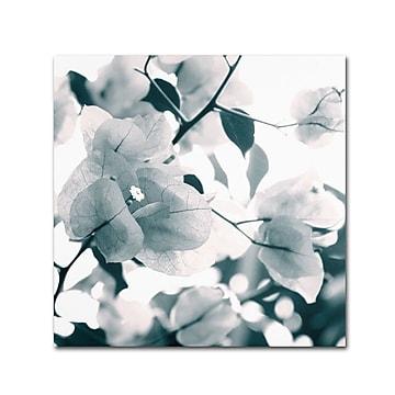 """Trademark Fine Art 14"""" x 14"""" Wooden Frame About a Flower Artwork"""