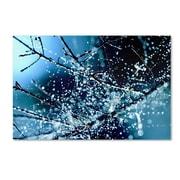 """Trademark Fine Art 24"""" x 16"""" Wooden Frame Blue Rhapsody"""
