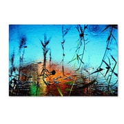 "Trademark Fine Art 14"" x 19"" Wooden Frame Painted by Nature"