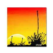 "Trademark Fine Art 24"" x 24"" Wooden Frame Century Sunset Artwork"