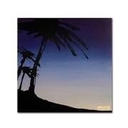 """Trademark Fine Art 18"""" x 18"""" Wooden Frame Evening Palms"""