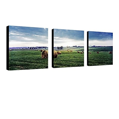 "Trademark Fine Art 24"" x 24"" Wooden Frame Gallery-Wrapped Canvas Art"