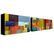 "Trademark Fine Art 18"" x 32"" ABS, Canvas Gallery-Wrapped Canvas Art"
