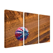 "Trademark Fine Art 12"" x 24"" Wood Gallery-Wrapped Canvas Art"
