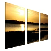 "Trademark Fine Art 16"" x 32"" Wooden Frame Gallery Wrapped Canvas Art"