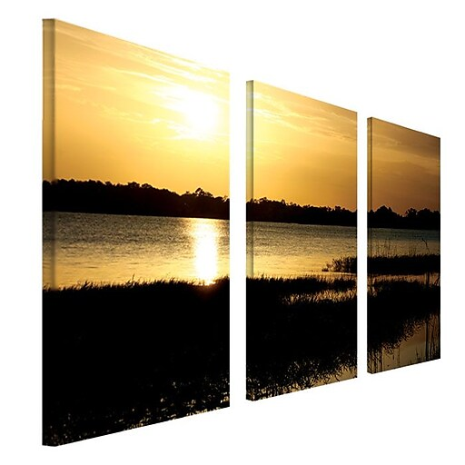 Trademark Fine Art 16 X 32 Wooden Frame Gallery Wrapped Canvas Art